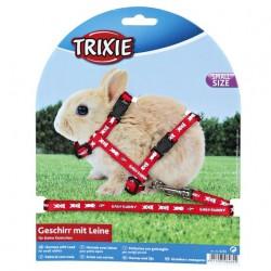 SZELKI dla Małych królików z MOTYWEM